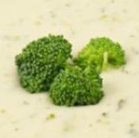 cream-of-broccoli